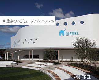 生きているミュージアム ニフレル