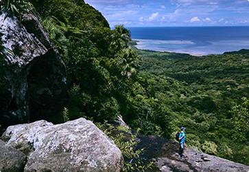 西表島ジャングルバトラー