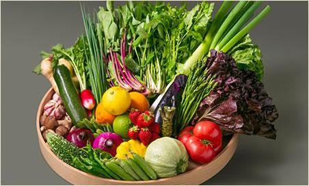 糸島産の新鮮野菜